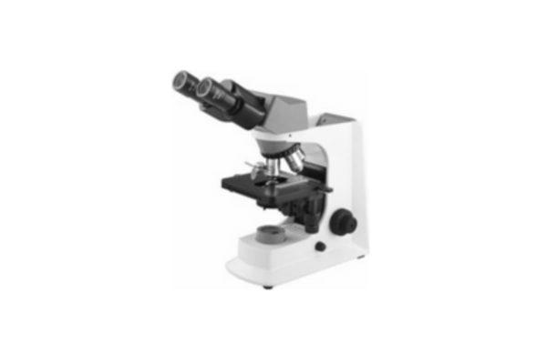 Microscope - Binocular Upright